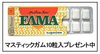 マスティック デンタルジェルα 45g x 4本(徳用) 【送料無料/マスティック樹脂配合】