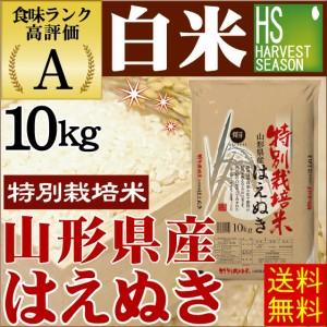 【送料無料】 白米 29年産 特別栽培米 山形はえぬき10kg【北海道沖縄へは別途送料630円】