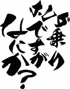 カッティングステッカー 車 バイク カッコイイ カスタム【ホンダ乗りですがなにか?(ホンダ・HONDA)(2枚1セット) (B)】【メール便】