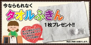 書道セット/リトルフラワー/罫線下敷き入り小学生女の子向け習字セット