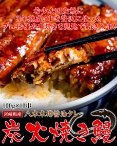 ギフト うなぎ 宮崎県産 炭火焼き鰻 『八本木樽醤油タレ』 100g×10串 ※冷凍 送料無料 のしOK