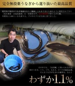 丑の日 うなぎ 鹿児島産 うなぎ蒲焼「五匠鰻」 約100〜120g×10尾 冷凍 送料無料
