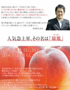 桃 もも お中元 和歌山・紀の里「嶺鳳桃」 約2kg(6〜8玉)化粧箱入り ※常温・送料無料