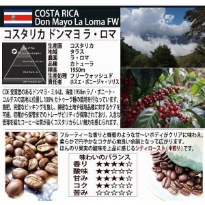送料無料【産地別コーヒー飲み比べセット】中南米 四家族 100g×4銘柄 TIRORIYACOFFEE