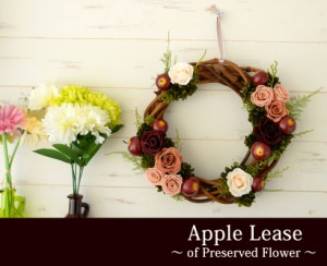 【即日出荷】プリザーブドフラワー アップルリース 秋 木の実 リース かわいい