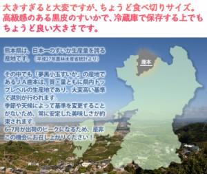 スイカ 熊本県産「夢黒小玉すいか」4L×1玉 1箱 秀品 約3kg ※常温・送料無料