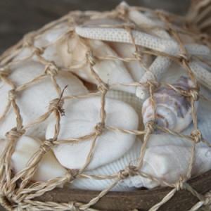貝殻 ココナツ シェルバスケット リゾート雑貨 マリン雑貨 ナチュラル