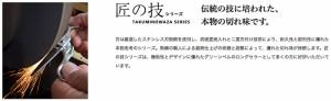 匠の技 G-1201 ステンレス製つめきり L 【Made in Japan】