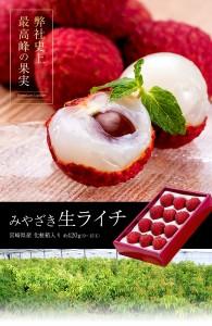 ライチ みやざき生ライチ 宮崎県産 約420g(9〜15玉)化粧箱入り ※冷蔵 のしOK
