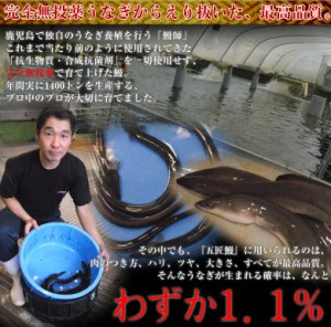 うなぎ 鰻 国産 鹿児島産 うなぎ蒲焼「五匠鰻」 約100〜120g×3尾 冷凍 送料無料 のしOK