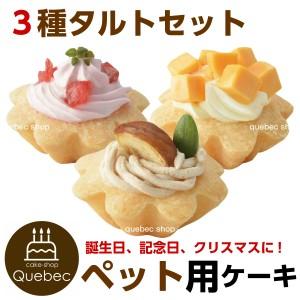 """""""誕生日ケーキ バースデーケーキ 犬猫用 プチタルトケーキセット (苺、栗、チーズ)  ペットケーキ ペット用ケーキ"""""""