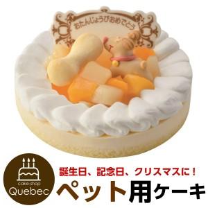 """""""誕生日ケーキ バースデーケーキ ワンちゃん用 犬用 ネコちゃん用 記念日ケーキ レアチーズ ペットケーキ"""""""