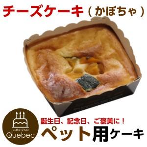"""""""新入荷(コミフ) 誕生日ケーキ ワンちゃん用 犬用 コミフ チーズケーキ かぼちゃ ペットケーキ"""""""