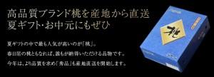 桃 もも お中元 山梨 「春日居の桃」 秀品 化粧箱入り 5〜6玉 約1.4kg 常温 送料無料 のしOK