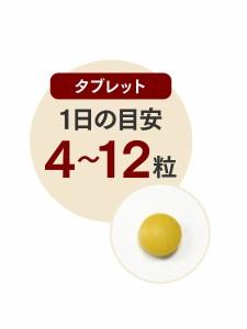 【送料無料】ウコンS(100粒×1袋)