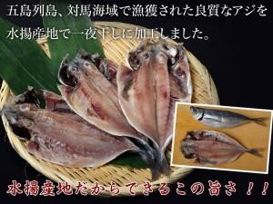 長崎県産 旬アジ(ときあじ) 一夜干し 80g×3尾×1袋 ※冷凍 ☆