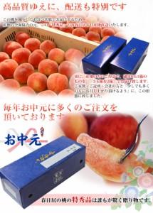 桃 もも お中元 ギフト 山梨県産 「春日居の桃《特秀品》」 大玉3玉×2箱 約1.8kg 常温 送料無料 のしOK