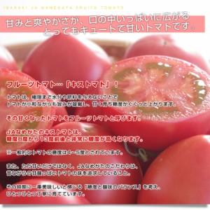 送料無料 茨城県より産地直送 JAなめがた フルーツトマト キストマト Sサイズ 約1キロ (17から25玉) 産直だより