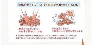 こだわり乾燥野菜 熊本県産 キャベツ 100g×5袋     【全国宅配便 送料無料】【吉良食品 国内産100% 焼きそば】