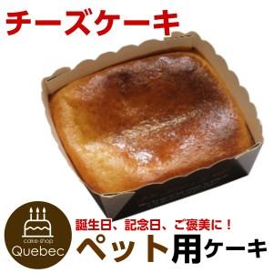 """""""新入荷(コミフ) 誕生日ケーキ 犬用 ワンちゃん用 コミフ チーズケーキ ペットケーキ"""""""
