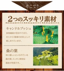 ちょ〜でるメタボメ茶 カップ用30個入 プーアール茶 プーアル茶 烏龍茶 杜仲茶 桑の葉茶 黒豆茶 キャンドルブッシュ ティーライフ