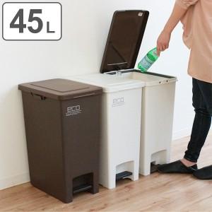 ゴミ箱 45L ペダル ふた付き 分別 ごみ箱 シンプル ダストボックス ( キッチン フタ付き ペール 45リットル 分別ごみ箱 分別ゴミ箱 袋