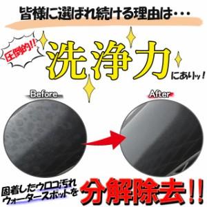 ステイン&スケールクリーナー 大容量500ml ボディのウロコ ウォータースポット除去剤 シリカスケールを一発除去 超強力 業務用