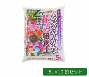 あかぎ園芸 もっとあざやかな花を咲かせる培養土 5L×10袋 このまま植えるだけ 花を鮮やかに咲かせる肥料入りの培養土