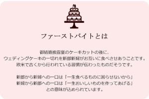 ファーストバイトに ビッグウエディングスプーン 誓いのスプーン クリア 45cm 薄紫色リボン(支社倉庫発送品)