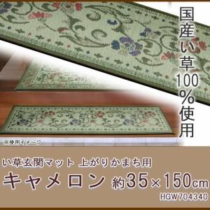 い草玄関マット キャメロン 上がりかまち用 約35×150cm HGW704340 厳選された国産い草を使用 玄関をオシャレに演出