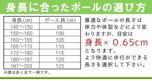 naito(ナイト工芸) カーボン ノルディックウォーキングポール セレクト 2本組 NWP-1160803