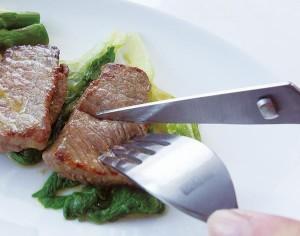 持ってて便利なお食事ハサミ FIN-516 肉・餅・麺類など 手軽にカット