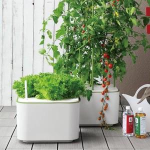 三栄水栓 SANEI アクア栽培用液肥(イエ・ナ) EC30-1