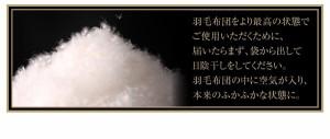 羽毛布団セット シングル8点セット フランス産ダウンエクセルゴールドラベル羽毛布団 プレミアム敷布団 極厚ボリュームタイプ