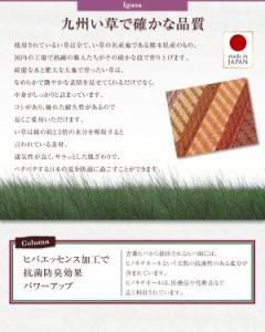 玄関マット 60×90cm おしゃれ ふっくら 6mm 純国産 い草ラグ