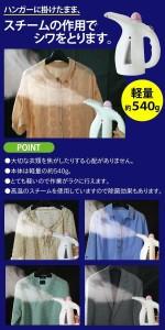 パワフル シワ取りスチーマー OR5014