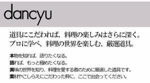 dancyuダンチュウ 鉄 天ぷら鍋セット26cm DA-09