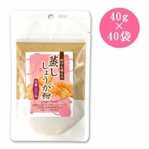 味源 蒸ししょうが粉(生姜粉末) 40g×40袋(支社倉庫発送品)