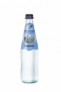 Sanbenedetto サンベネデット スパークリングウォーター グラスボトル 500ml×20(支社倉庫発送品)