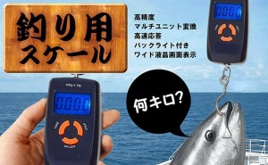 魚釣り スケール 便携なサイズで重さを簡単にはかる 送料無料 H1960B