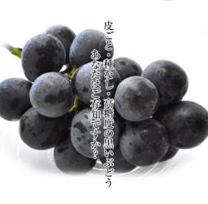 ぶどう 葡萄 送料無料 長野 ナガノパープル 2房(合計 約800g)※常温又は冷蔵