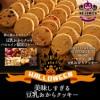 ハロウィン限定豆乳おからクッキー(秋の大収穫セ...