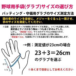 ハタケヤマ hatakeyama 捕手用 手袋 左手用 KG-20  新入学 野球部 新入部員 野球用品 スワロースポーツ