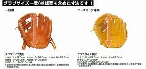 【即日出荷】 ザナックス 軟式 ミット ザナパワー キャッチャー用 BRC-2617 お年玉 新年会 初売り