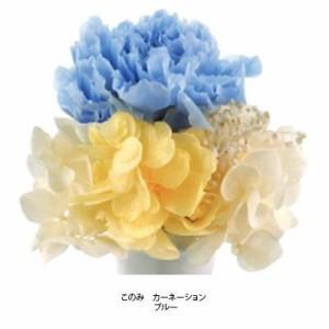 プリザーブドフラワー(ミニ仏花) このみ カーネーション ブルー C21750