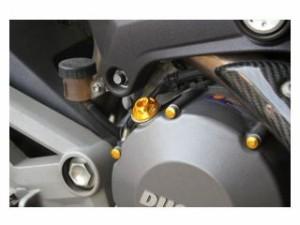 SSK モンスター821 エンジンオイルパーツ MONSTER 821用オイルフィラーキャップ M20×P2.5 チタン