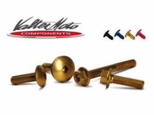 バルターモトコンポーネンツ GSX-R1000 その他外装関連パーツ カウルボルトキット ゴールド