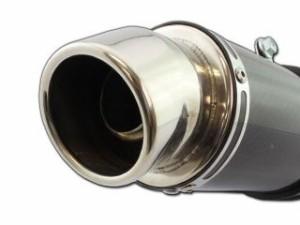ライズコーポレーション ズーマーX マフラー本体 ズーマーX JF52 カーボンサイレンサー カスタムマフラー