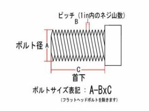 ネオファクトリー ハーレー汎用 その他外装関連パーツ ヘックスボルト クローム 5/16-24×3/4in
