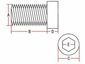 ネオファクトリー ハーレー汎用 その他外装関連パーツ アレンボルト ショウクローム 1/2-13×2-1/4in